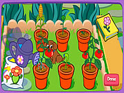 Click to Play Dora's Magical Garden