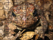 Click to Play American Toad Jigsaw Puzzle