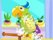 Click to Play Parrot Care